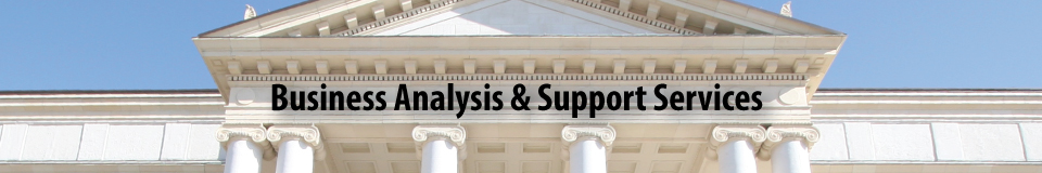 Business Analysis & Support Services