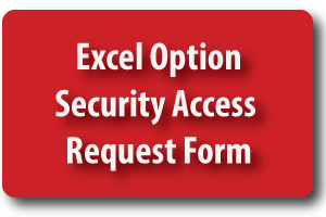 Excel Option Security Access Form