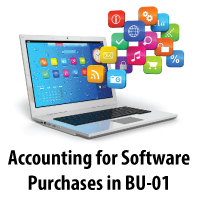 Accounting for Software Purchases in Business Unit 01